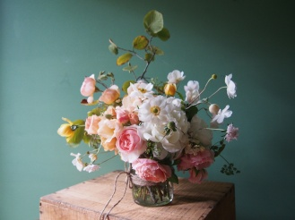 Hazelnut anemone rose