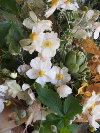 anemone artichoke