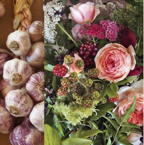 roses and garlic